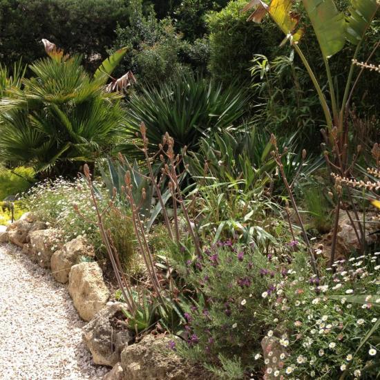 exotic garden 2