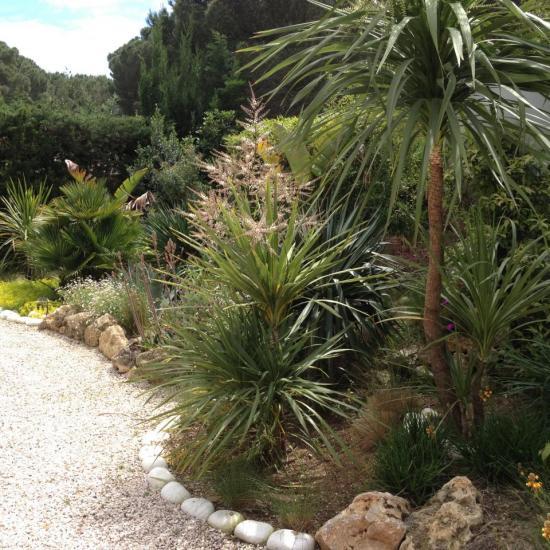 exotic garden 3